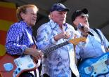 "The Beach Boys : ""Good Vibrations"""